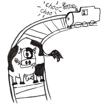black-white-cow-on-tracks