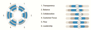 Agile assessment survey results